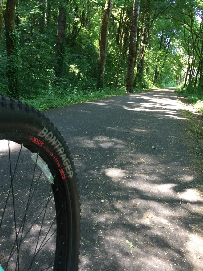 Trail ahead.